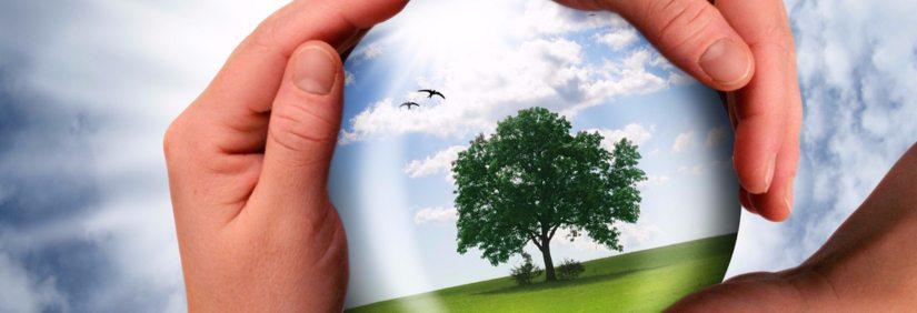 Protection environnement en Ouataouais